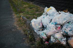 害鳥駆除を施した後のゴミなど